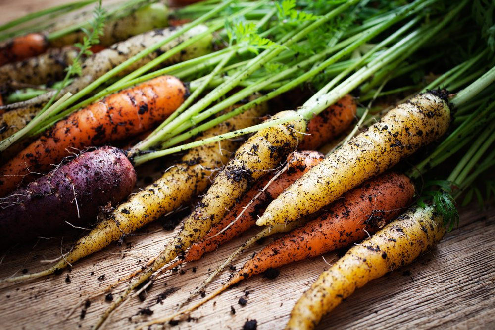 Harvest Select Vegetables